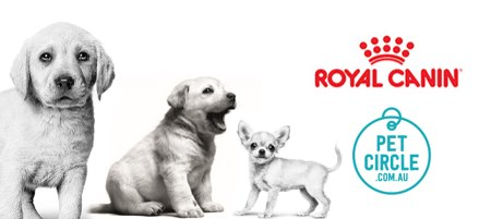 ROYAL CANIN and Pet Circle